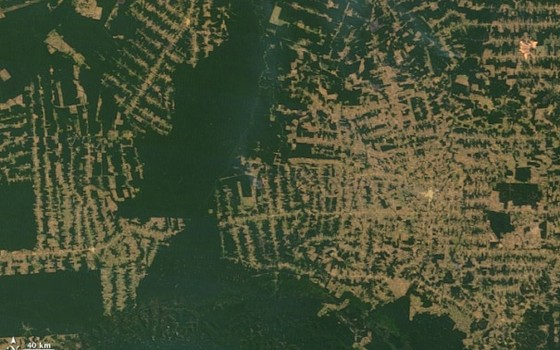 Imagem de satélite mostra desmatamento da Amazônia em Rondônia (Foto: Reprodução/Google Earth)