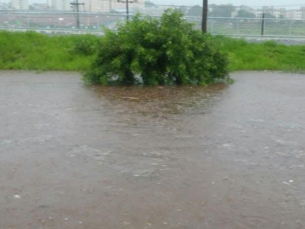Rua dos Abacateiros, no Núcleo Geisel, ficou alagada com a chuva (Foto: Arquivo pessoal/Davih Alexander)