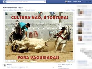 Montagens foram compartilhadas pelas ONGs que defendem os animais foram compartilhadas nas redes (Foto: Reprodução/Facebook)