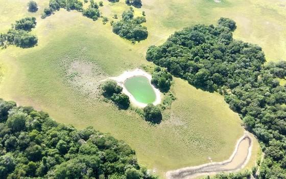 Lagoas coloridas no Pantanal (Foto: Divulgação - Instituto SOS Pantanal)