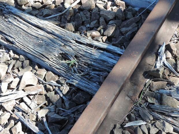Ferrovia na região de Presidente Prudente está desativada (Foto  Stephanie  ... 89f20a64ff