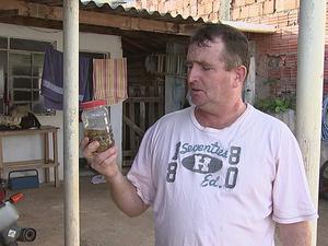 infesta_escorpioes_-_tv_tem_2 Sem limpeza em terreno, bairro em Tatuí tem infestação de escorpiões Dedetização Notícias Pragas