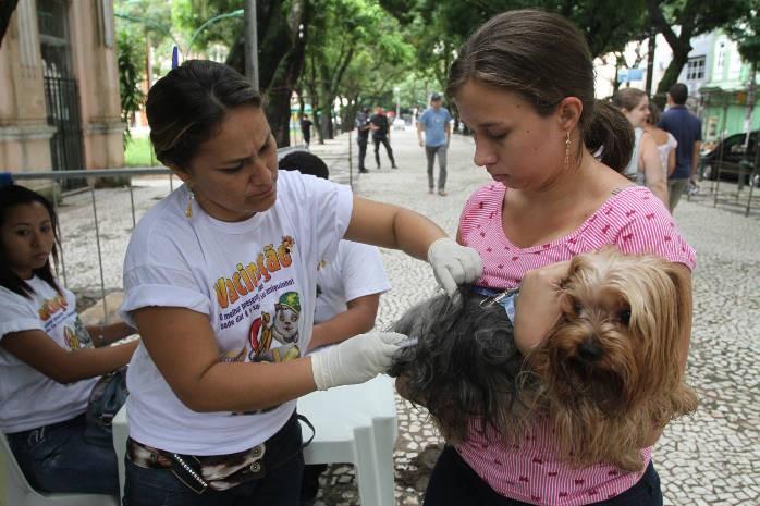 Campanha Anti-Rábica será realizada no sábado. (Foto: Elielson Modesto/Amazônia Jornal)