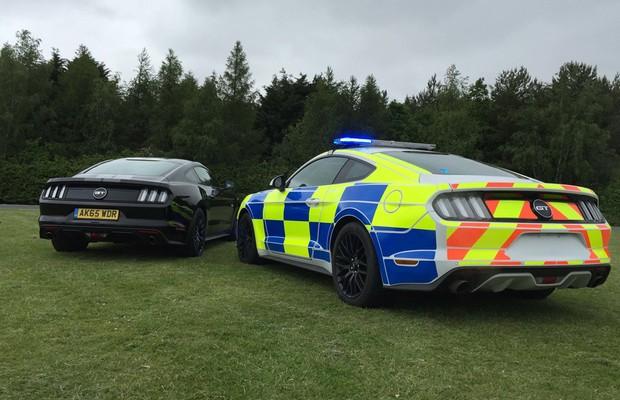 Estilo do Ford Mustang GT policial chama atenção pela pintura Battenburg (Foto: Divulgação)