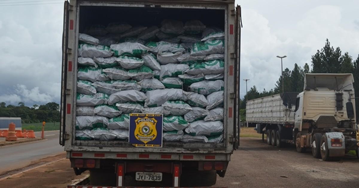 PRF apreende sete toneladas de carvão vegetal ilegal em Vilhena ... - Globo.com