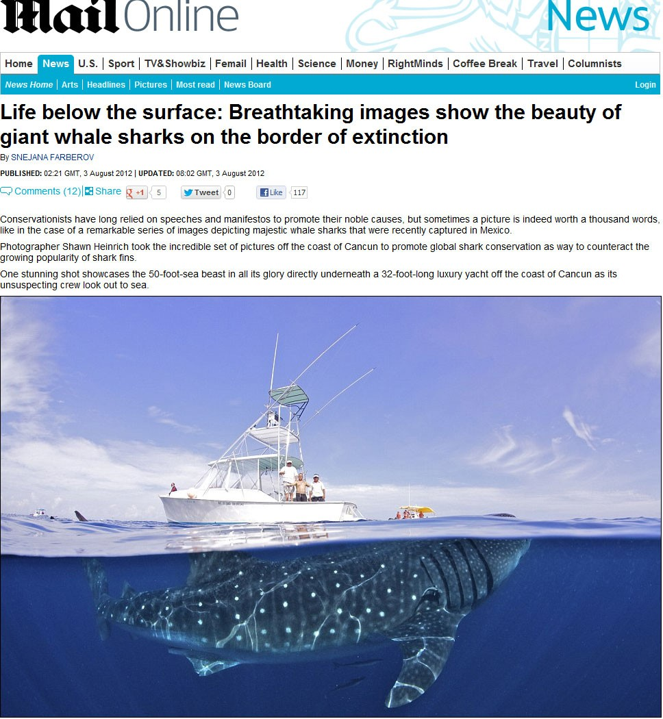 Exemplar de tubarão-baleia de 15 metros é fotografado embaixo de iate de luxo na costa de Cancún, no México. (Foto: Reprodução/Daily Mail)