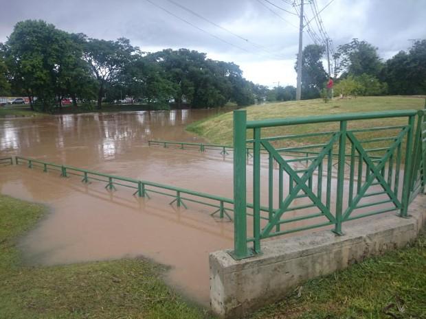 Rio Sorocaba cobriu grades de proteção em uma das margens (Foto: Tássia Lima / G1)