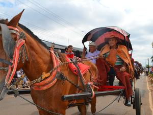 O técnico de segurança Romário Castro participou da Cavalgada 2014 em uma carroça (Foto: Caio Fulgêncio/G1)