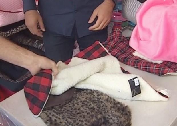 Cobertores e casinhas especiais são vendidas para dias mais frios (Foto: Reprodução / TV TEM)