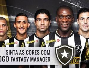 Botafogo - fantasy manager (Foto: Reprodução / Site oficial)