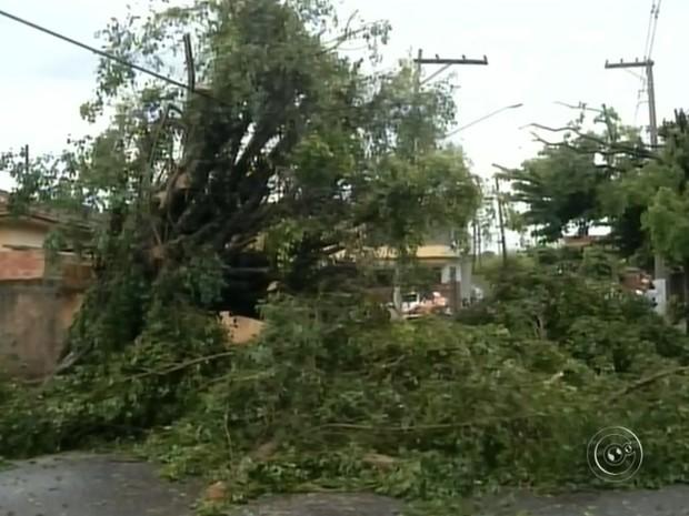 Vento chegou a 70 km/h em Santa Cruz do Rio Pardo (Foto: Reprodução / TV TEM)