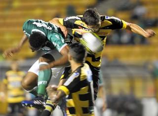 Palmeiras x Novorizontino (Foto: Marcos Ribolli)