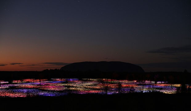 Field of Light Bruce Munro (Foto: CortesiaBruce Munro)