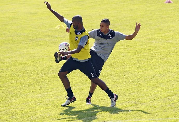 Airton, Fernandes, Botafogo (Foto: Vitor Silva/SSPress/Botafogo)