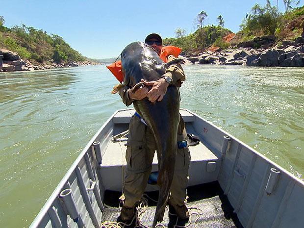 A pirarara gigante é um dos destaques do programa deste sábado (12) (Foto: Reprodução /Terra da Gente)