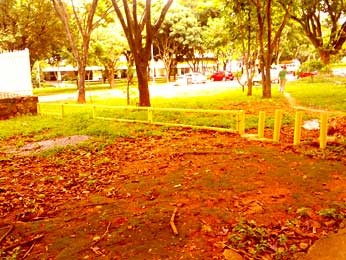 Cerca e pinos impedem passagem por gramado na Asa Norte (Foto: Leandro Gonçalves/VC no G1)