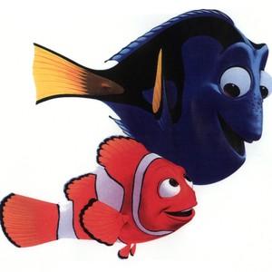 """Cena do filme """"Procurando Nemo"""". (Finding Nemo, EUA, 2003). Dirigido por Andrew Stanton e Lee Unkrich. (Foto: Divulgação)"""