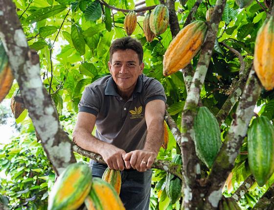 Ademir Venturin na plantação de Cacau (Foto: Lilo Clareto/ÉPOCA)