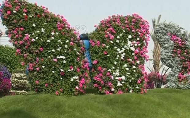 Flores formam borboletas no jardim das borboletas de Dubai (Foto: Reprodução/G1)