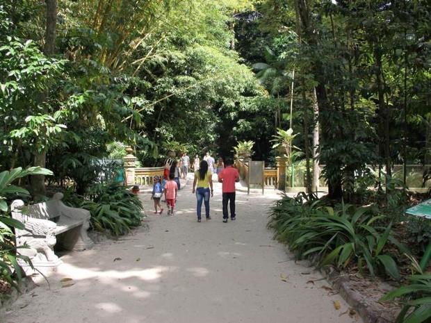Dia da Árvore foi celebrado numa programação especial no Bosque Rodrigues Alves, uma das principais áreas de preservação do Pará. (Foto: Divulgação/ Alessandra Serrão - NID/Comus)