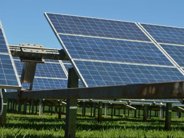 Os painéis solares são compostos por células fotovoltaicas, que recebem a luz do sol (Foto: Arquivo pessoal)