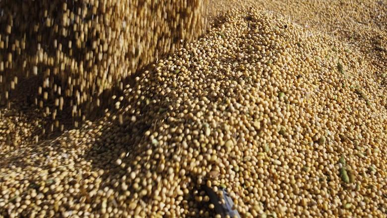 soja-colheita-grão-luís-eduardo-magalhães-bahia (Foto: Jonathan campos/Gazeta do Povo)