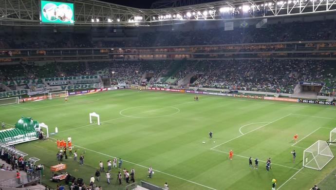 Arena Palmeiras (Foto: Fernando Martins)