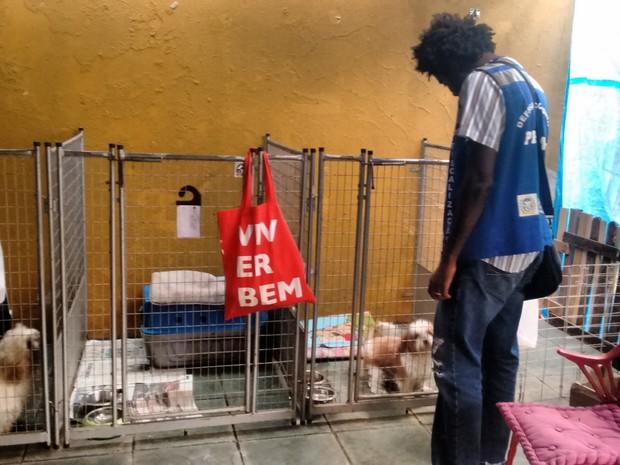 Ação do Procon autuou sete hoteis para cães no Rio (Foto: Divulgação/Procon RJ)