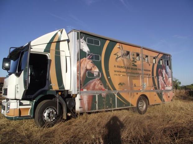 Os animais estavam sendo carregados neste caminhão adaptado para transporte de carga viva (Foto: Divulgação/Defesa Civil)