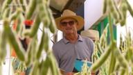 Gisele Loeblein comenta pautas do agronegócio na Expodireto