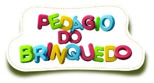 pedágio do brinquedo 300 (Foto: Divulgação/RBS TV)
