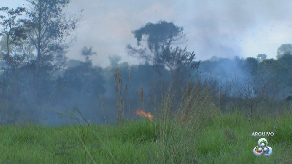 Ideia é preservar áreas verdes e reduzir queimadas no Acre  (Foto: Reprodução/Rede Amazônica Acre )