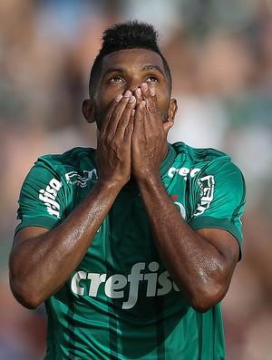 Borja comemora Palmeiras