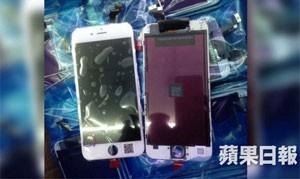 Site 'Apple Daily' publicou imagens de supostos novos iPhones com dois tamanhos diferente saindo de fábrica na China (Foto: Reprodução/Apple Daily)