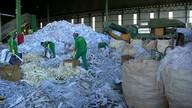 Empresários veem oportunidades com nova lei do lixo
