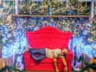 Ex-BBB Yuri brinca em foto que vai dormir na cadeira do Papai Noel