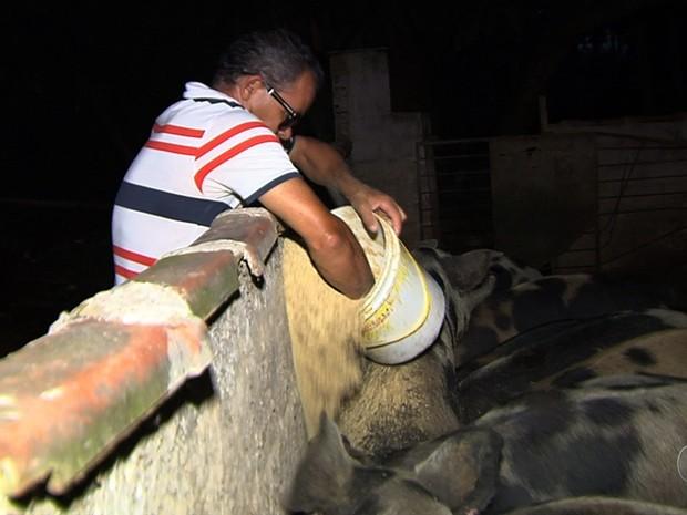 Produtor rural cego cuida sozinho de fazenda em Goiás: 'Ocupar a mente' (Foto: Reprodução/TV Anhanguera)