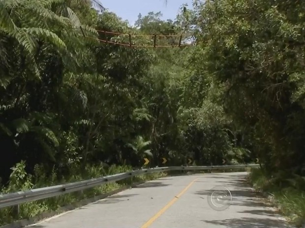 Nenhum atropelamento foi registrado em um mês após inauguração (Foto: Reprodução/ TV TEM)