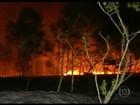 Brasil registra mais de 17 mil focos de incêndio em setembro, afirma o Inpe