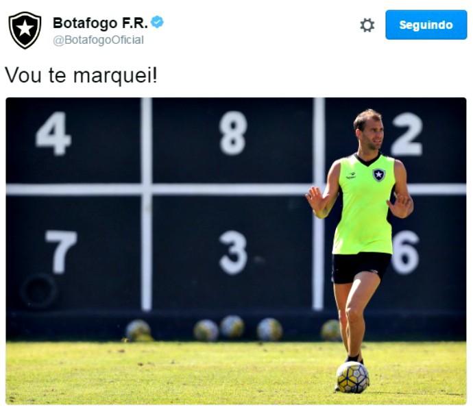 Carli, Botafogo (Foto: Reprodução / Twitter)