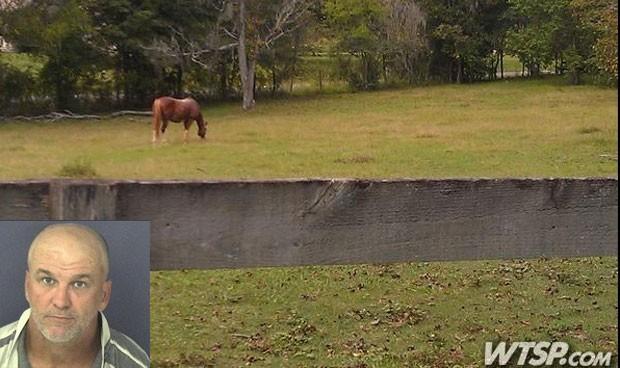 Patrick Louis Linn foi acusado de invadir o estábulo de vizinho e fazer sexo com cavalo. (Foto: Reprodução)