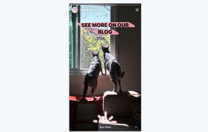 Instagram agora deixa você levar as pessoas para um link externo em conta verificada (Foto: Divulgação/Instagram)