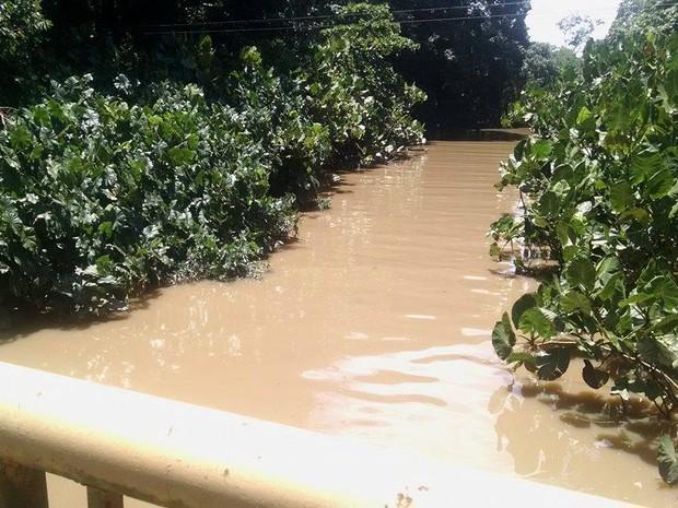 Na Universidade Federal do Pará, o Rio Guamá, que atravessa a insituição, encheu e subiu cerca de um metro. (Foto: Gil Sóter/ G1 PA)