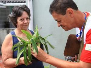Secove faz mutirão de combate a dengue no Embaré nesta quarta-feira (Foto: Tadeu Nascimento / Prefeitura de Santos)