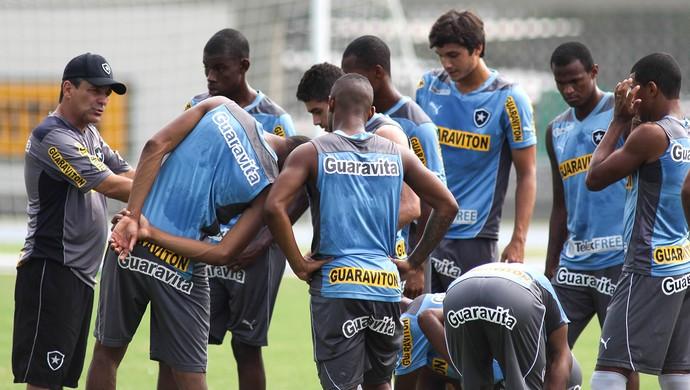 Eduardo Hungaro comandando o time do botafogo (Foto: Luciano Belford/SSPress)