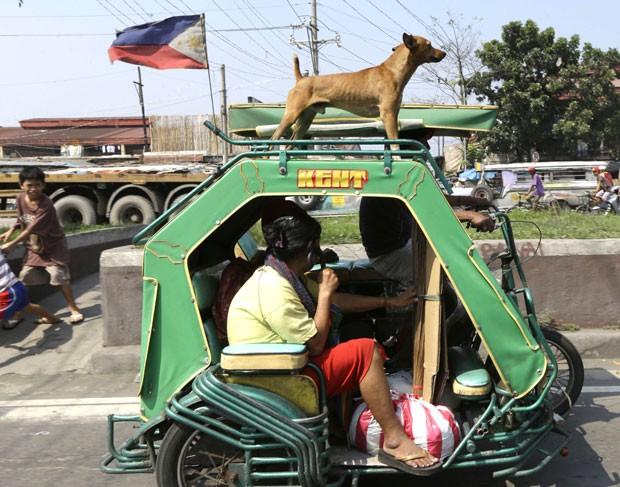 Cão foi flagrado viajando em cima de triciclo motorizado em Malabon. (Foto: Bullit Marquez/AP)
