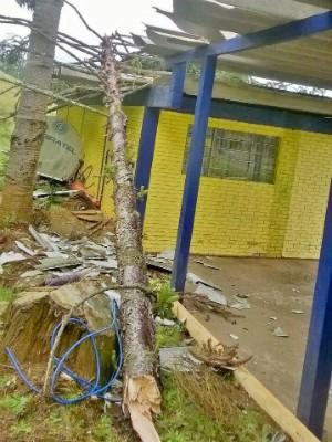 Ninguém ficou ferido (Foto: PRF SC/Divulgação)