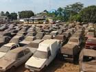 Quase 2 mil veículos apreendidos aguardam por retirada em Rio Branco