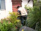 Índice de infestação do mosquito da Dengue ultrapassa 3% em Maringá