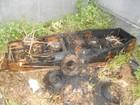 Internauta flagra sepultura danificada e caixão queimado em Pitangui